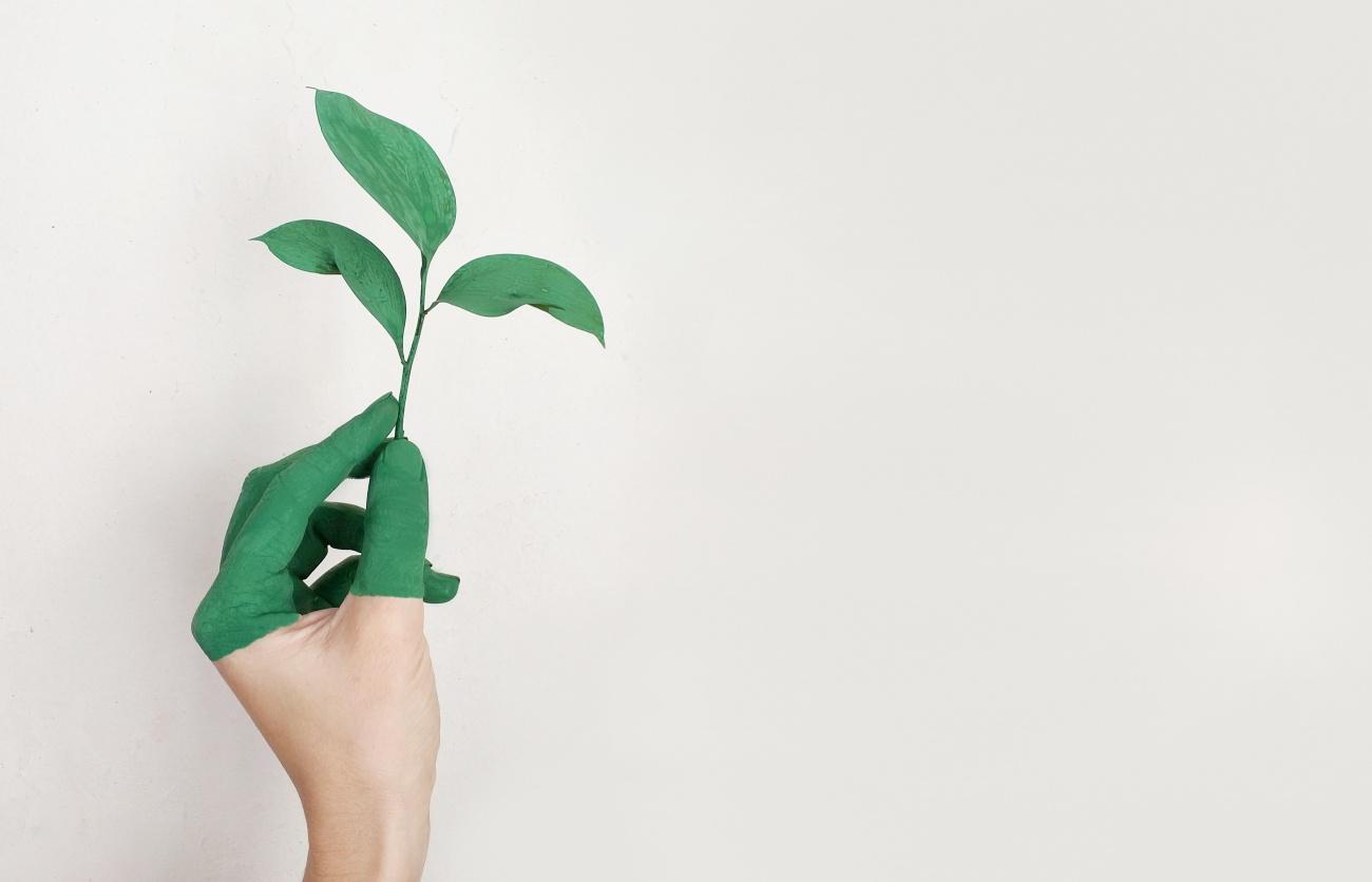 Grüner Daumen Gesundheit Sport Nachhaltigkeit